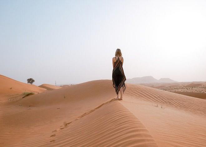 Lựa chọn loài động vật đi cùng bạn trong sa mạc để khám phá điều mà bạn muốn giữ lại dù có phải đánh đổi tất cả - Ảnh 4.