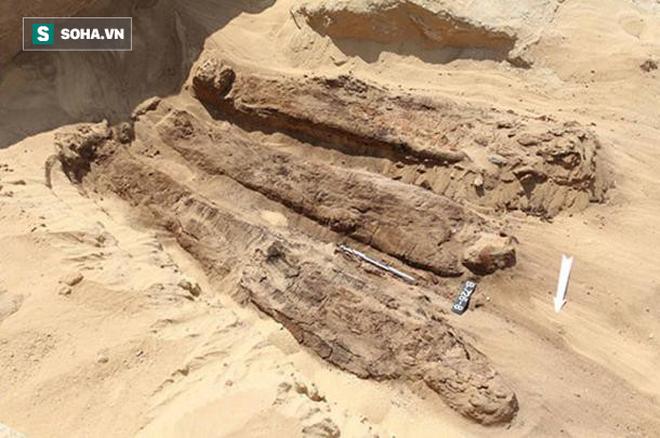 Phát hiện hàng trăm xác ướp được chôn xung quanh kim tự tháp cổ nhất thế giới - Ảnh 2.