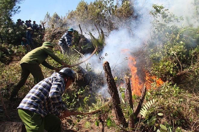 Cháy rừng liên tục ở Hà Tĩnh, thiếu thiết bị chữa cháy nói gì đến trực thăng - Ảnh 2.