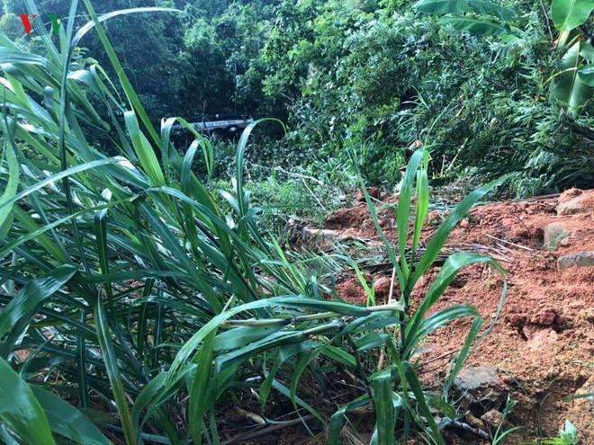 Xe khách lao xuống vực sâu 30m ở Quảng Ninh, 2 người tử vong - Ảnh 1.