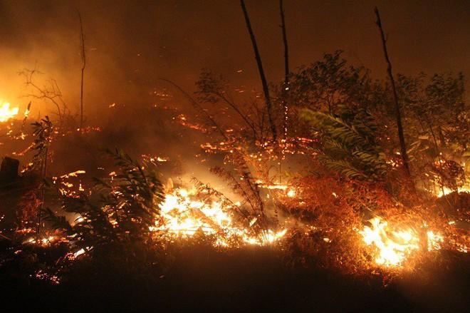Cháy rừng liên tục ở Hà Tĩnh, thiếu thiết bị chữa cháy nói gì đến trực thăng - Ảnh 3.