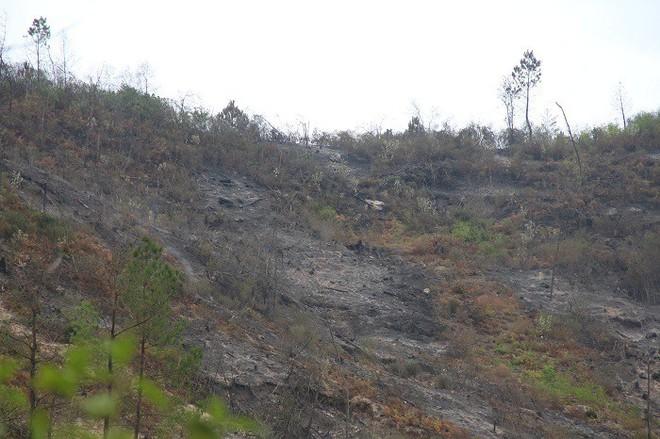 Cháy rừng liên tục ở Hà Tĩnh, thiếu thiết bị chữa cháy nói gì đến trực thăng - Ảnh 4.