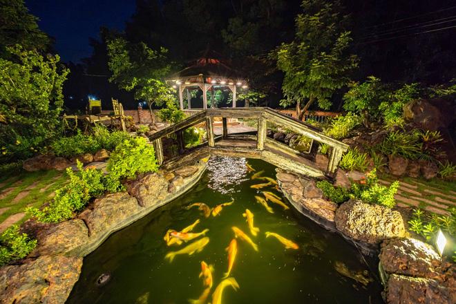 Nhà vườn rộng 1.600 m2 và hồ cá Koi 5 tỉ đồng của Hoàng Mập - Ảnh 9.