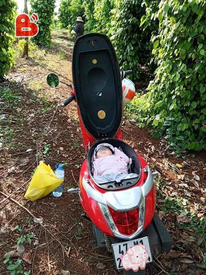 Đặt con vào cốp xe máy vì mẹ mải làm rẫy, hình ảnh khiến dân mạng tranh cãi gay gắt - Ảnh 3.