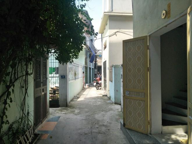 Chó Malinois cắn xé bà cụ ở Hà Nội chỉ buông tha nạn nhân khi bị đập gậy vào đầu - ảnh 1