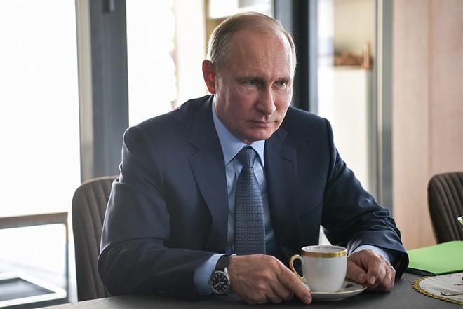 8 nơi ở chính thức của Tổng thống Nga Putin - ảnh 5
