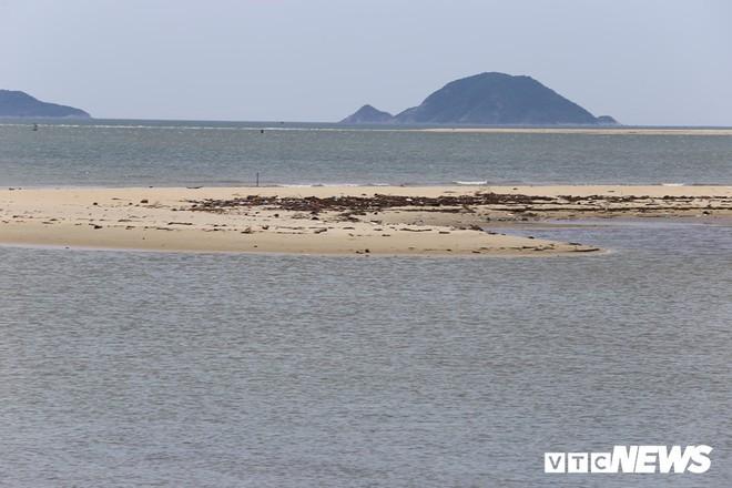 Đảo cát thứ 2 'mọc' giữa biển Cửa Đại từ bao giờ? - Ảnh 2.