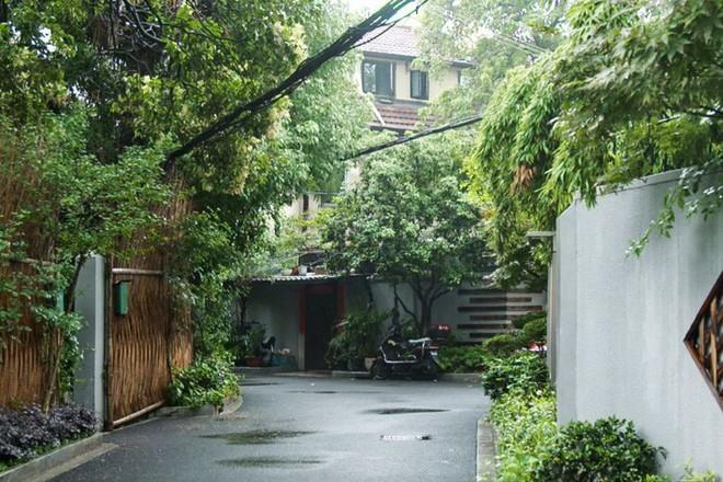 Không phải biệt thự tráng lệ, người phụ nữ sinh ra trong gia đình giàu có bậc nhất Thượng Hải lại ở trong ngôi nhà vườn khoáng đạt giữa thiên nhiên - Ảnh 3.