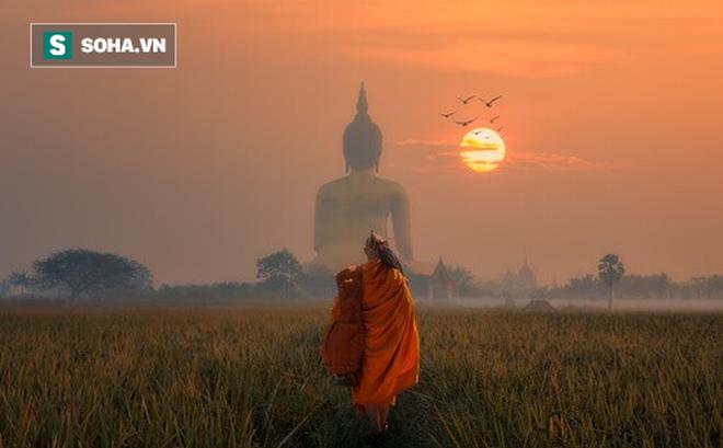 Bị môn đồ hối thúc, Đức Phật kể câu chuyện mũi tên tẩm thuốc độc giúp anh ta ngộ ra tất cả