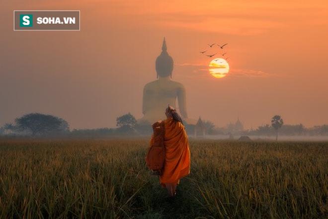Bị môn đồ hối thúc, Đức Phật kể câu chuyện mũi tên tẩm thuốc độc giúp anh ta ngộ ra tất cả - Ảnh 1.