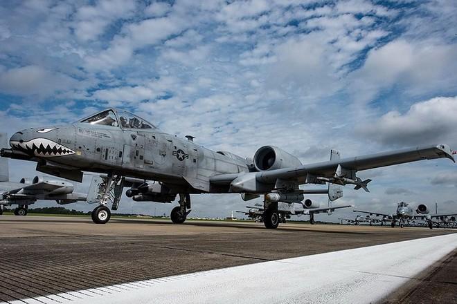 Cường kích A-10 Mỹ bất ngờ tới Hàn Quốc để răn đe Triều Tiên? - Ảnh 10.