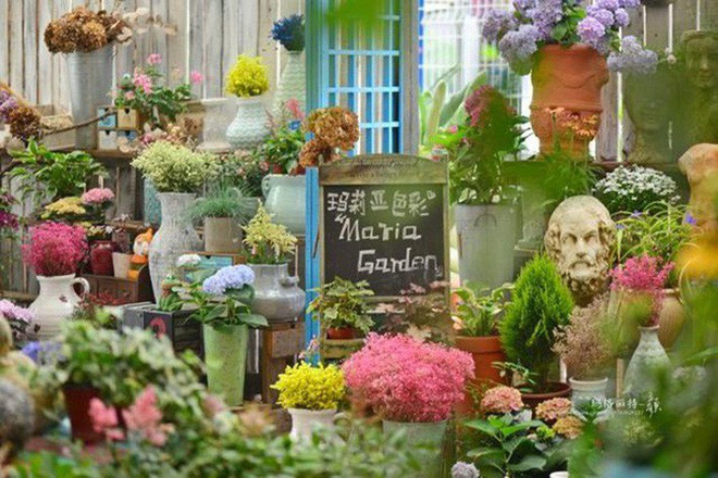 Chìm đắm trong khu vườn đẹp như mê cung nhờ bàn tay khéo léo của người đàn ông yêu thích làm vườn - Ảnh 21.