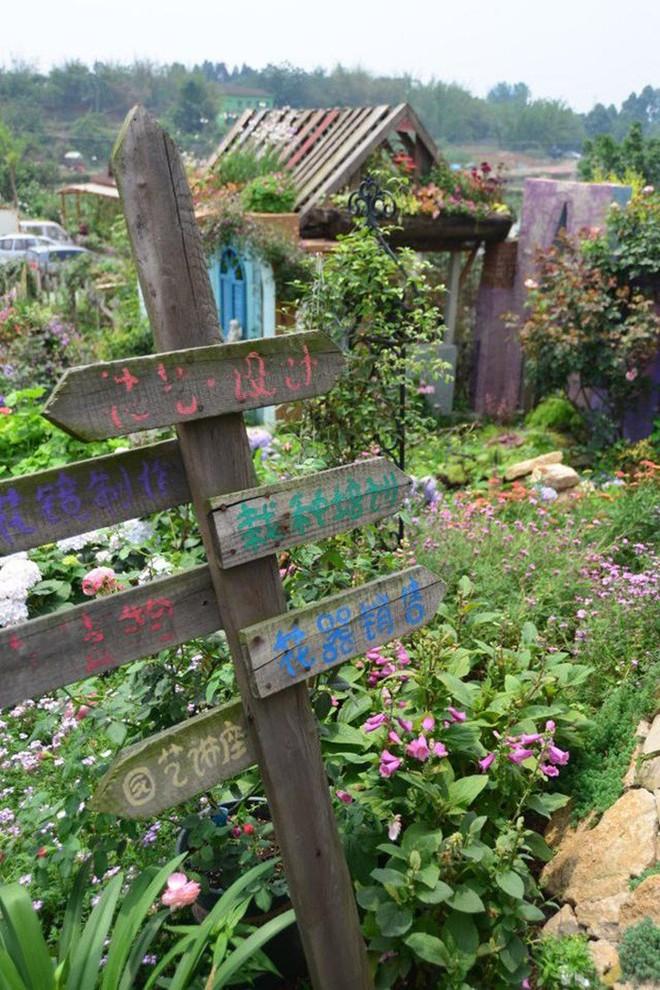 Chìm đắm trong khu vườn đẹp như mê cung nhờ bàn tay khéo léo của người đàn ông yêu thích làm vườn - Ảnh 30.