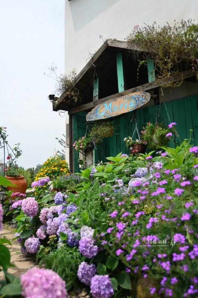 Chìm đắm trong khu vườn đẹp như mê cung nhờ bàn tay khéo léo của người đàn ông yêu thích làm vườn - Ảnh 31.