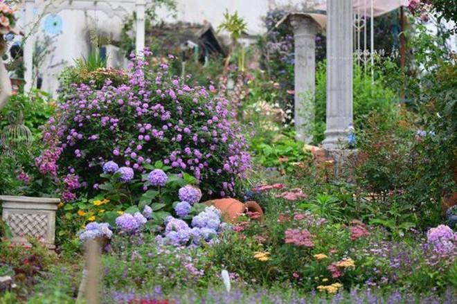 Chìm đắm trong khu vườn đẹp như mê cung nhờ bàn tay khéo léo của người đàn ông yêu thích làm vườn - Ảnh 42.