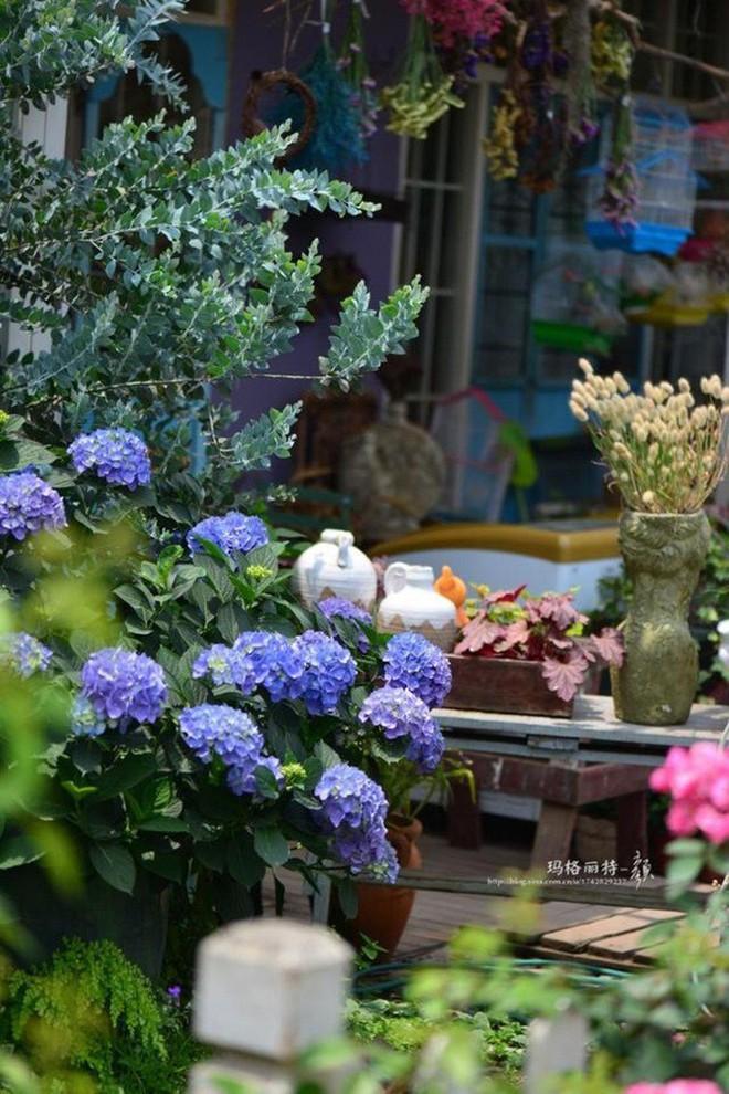 Chìm đắm trong khu vườn đẹp như mê cung nhờ bàn tay khéo léo của người đàn ông yêu thích làm vườn - Ảnh 4.