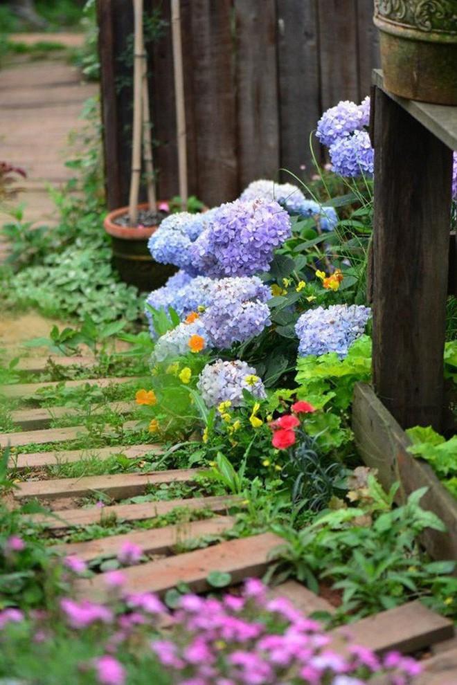 Chìm đắm trong khu vườn đẹp như mê cung nhờ bàn tay khéo léo của người đàn ông yêu thích làm vườn - Ảnh 29.
