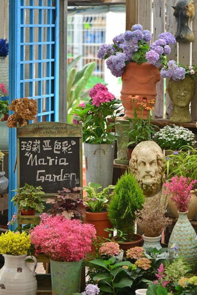 Chìm đắm trong khu vườn đẹp như mê cung nhờ bàn tay khéo léo của người đàn ông yêu thích làm vườn - Ảnh 5.
