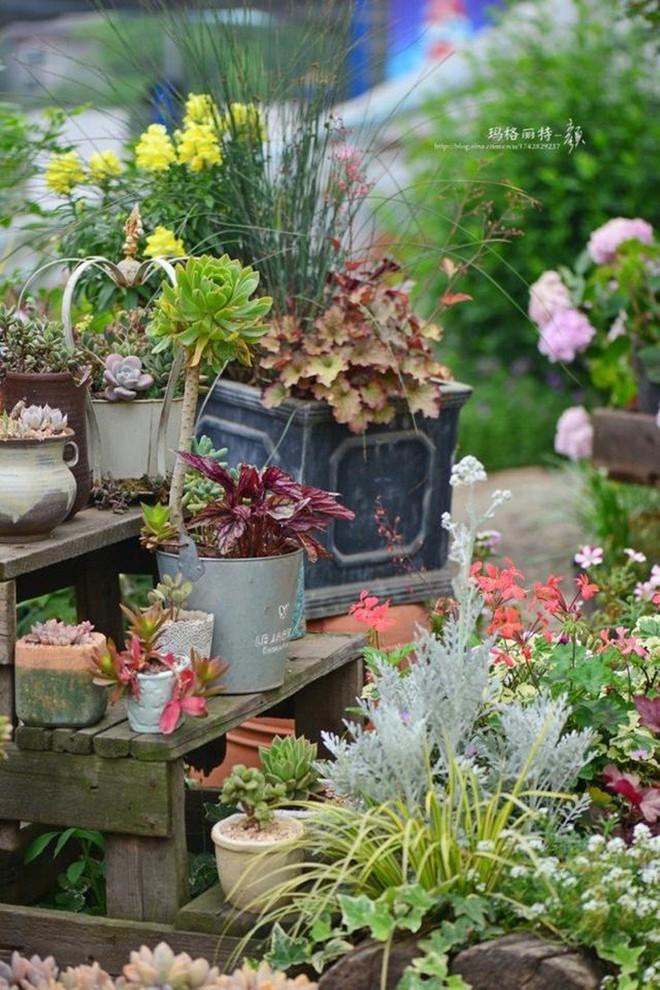 Chìm đắm trong khu vườn đẹp như mê cung nhờ bàn tay khéo léo của người đàn ông yêu thích làm vườn - Ảnh 19.