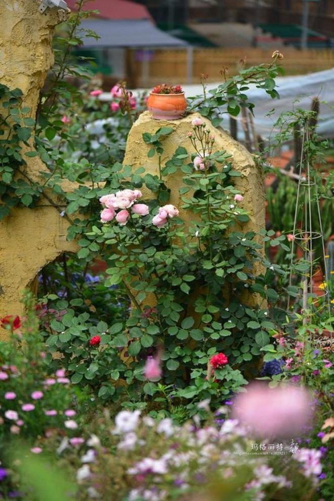 Chìm đắm trong khu vườn đẹp như mê cung nhờ bàn tay khéo léo của người đàn ông yêu thích làm vườn - Ảnh 27.