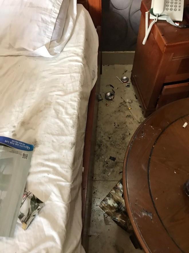 Cặp đôi lén lút mang chó vào khách sạn, ra về để lại căn phòng kinh hãi - Ảnh 1.