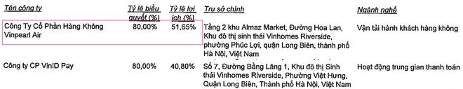 Thông tin hiếm hoi hé lộ mối quan hệ giữa Vingroup và hãng hàng không Vinpearl Air - Ảnh 1.
