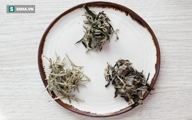 Công dụng tuyệt vời của bạch trà: Đây là lý do món đồ uống này vừa hiếm vừa đắt - Ảnh 1.
