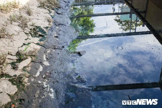 Ảnh: Cận cảnh đáy sông Tô Lịch sau 3 tuần thí điểm công nghệ Nhật Bản phân hủy bùn hữu cơ - Ảnh 6.