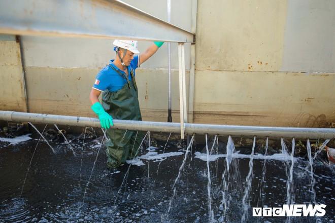 Ảnh: Cận cảnh đáy sông Tô Lịch sau 3 tuần thí điểm công nghệ Nhật Bản phân hủy bùn hữu cơ - Ảnh 7.