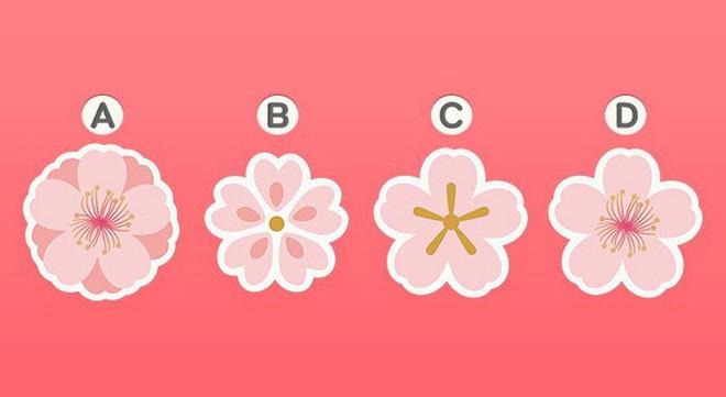 Bạn yêu cuồng nhiệt hay yêu ngọt ngào? Hãy chọn 1 bông hoa đào và xem đáp án - Ảnh 8.