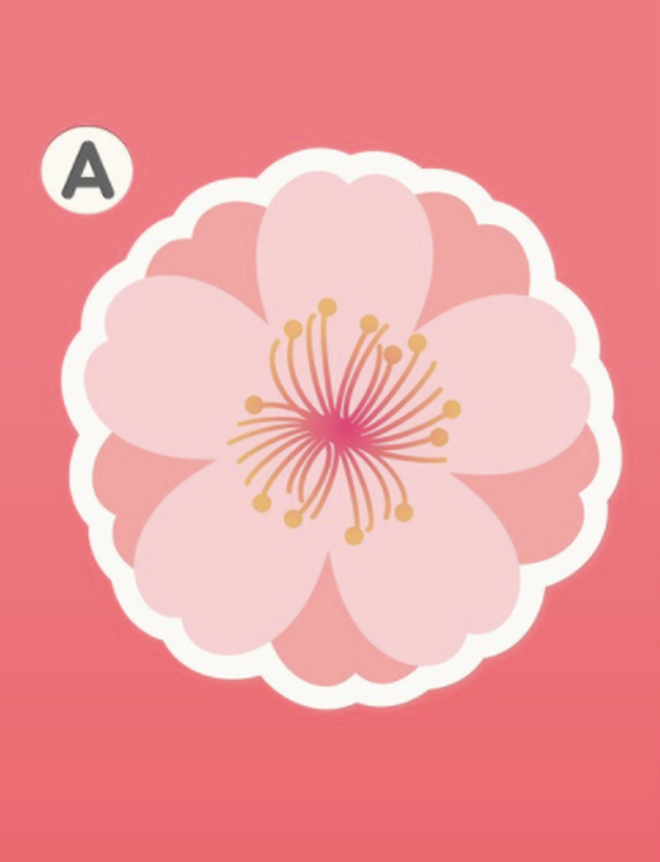 Bạn yêu cuồng nhiệt hay yêu ngọt ngào? Hãy chọn 1 bông hoa đào và xem đáp án - Ảnh 2.