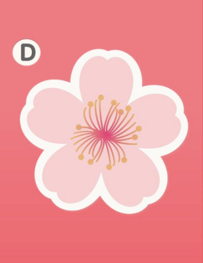 Bạn yêu cuồng nhiệt hay yêu ngọt ngào? Hãy chọn 1 bông hoa đào và xem đáp án - Ảnh 6.