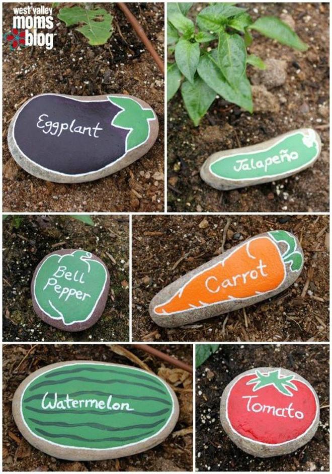 Dù không có nhiều kinh nghiệm trong trồng rau thì với 10 lưu ý dưới đây bạn vẫn có thể sở hữu một vườn rau tươi tốt - Ảnh 2.