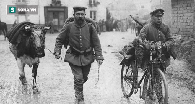 Tha chết cho 1 con bò già, tướng lĩnh quân đội Đức sống sót thần kỳ trong Thế chiến thứ 2 - Ảnh 1.