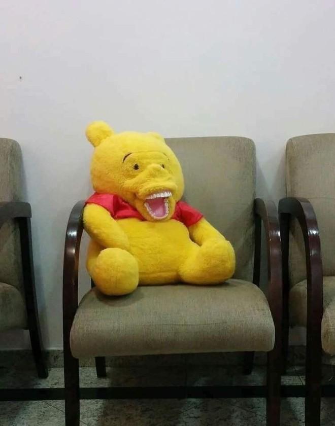 Đặt mua trên mạng đến khi nhận hàng, khách giật mình trước biểu cảm của con gấu bông - ảnh 2