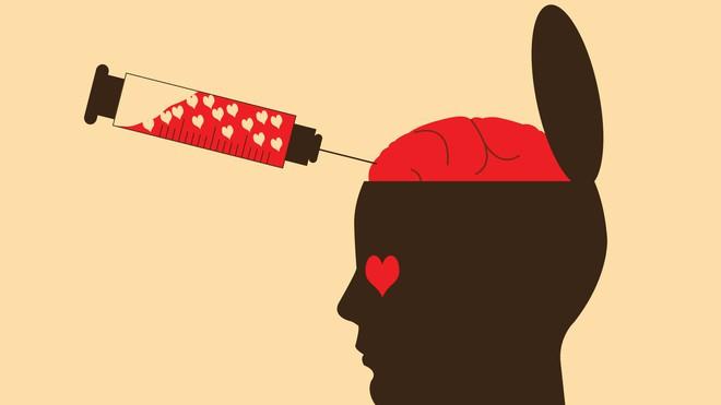 Sapiosexual - Khi ngoại hình nóng bỏng cũng không bằng một bộ não thông minh hay chuyện yêu đương đến từ hai cái đầu đặc chữ - Ảnh 3.