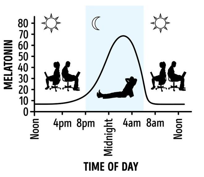 6 điều có thể xảy ra với cơ thể khi bạn ngủ ngoài trời - Ảnh 2.