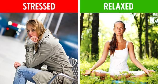 6 điều có thể xảy ra với cơ thể khi bạn ngủ ngoài trời - Ảnh 5.