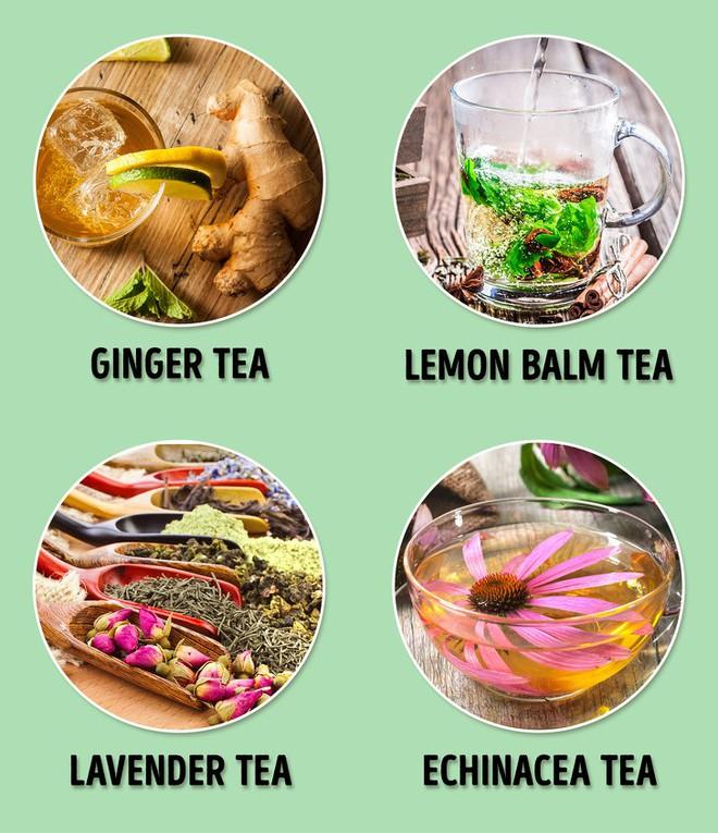 Những phương pháp từ tự nhiên giúp đường ruột của bạn luôn khỏe mạnh - Ảnh 6.