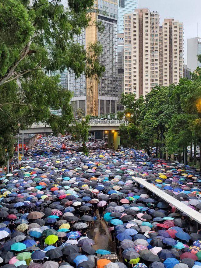 Biển ô tuôn xuống đường ở Hồng Kông ngày cuối tuần - ảnh 1