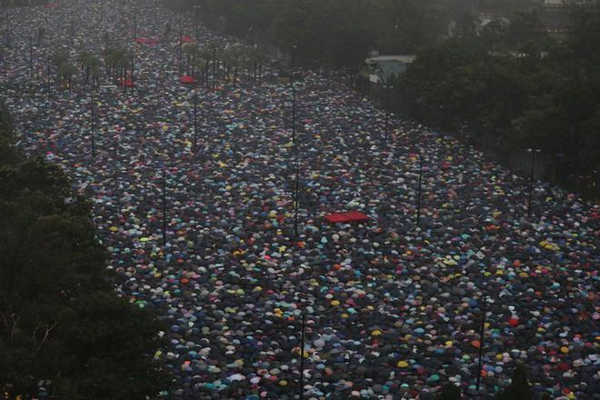 Biển ô tuôn xuống đường ở Hồng Kông ngày cuối tuần - ảnh 2