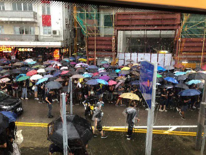 Biển ô tuôn xuống đường ở Hồng Kông ngày cuối tuần - ảnh 3