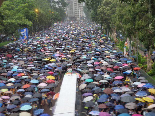Biển ô tuôn xuống đường ở Hồng Kông ngày cuối tuần - ảnh 6