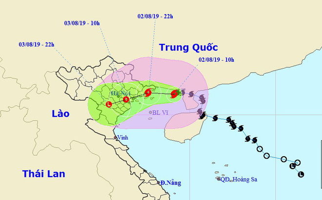 Bão số 3: Móng Cái - Quảng Ninh đang mưa rất to, cây cối bật gốc, đổ rạp trên đường - Ảnh 7.