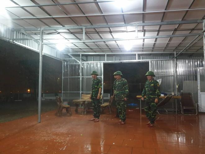 Bão số 3: Móng Cái - Quảng Ninh đang mưa rất to, cây cối bật gốc, đổ rạp trên đường - Ảnh 5.