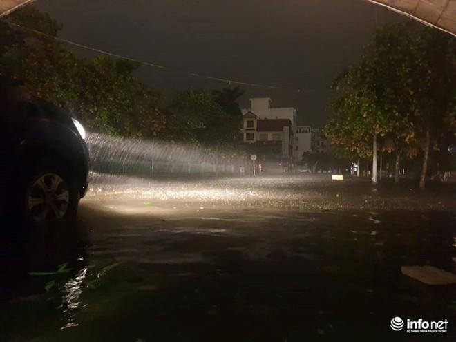 Bão số 3: Móng Cái - Quảng Ninh đang mưa rất to, cây cối bật gốc, đổ rạp trên đường - Ảnh 3.