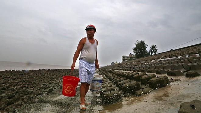 Bão sầm sập ngoài khơi, ngư dân tranh thủ nhặt hải sản trên bờ - Ảnh 7.