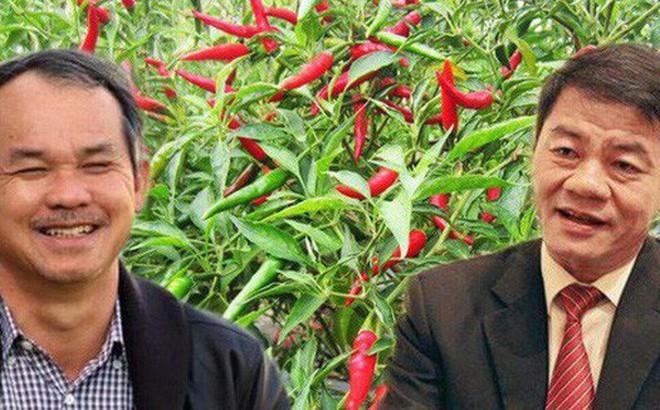 """Thaco và các cá nhân liên quan liên tục gia tăng tỷ lệ sở hữu, liệu """"bầu Đức"""" có mất quyền kiểm soát tại công ty CP nông nghiệp quốc tế Hoàng Anh Gia Lai?"""