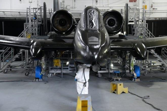 Hãy quên F-35 đi: Lợn lòi A-10 sẽ tiếp tục thống trị chiến trường với đôi cánh mới? - Ảnh 1.
