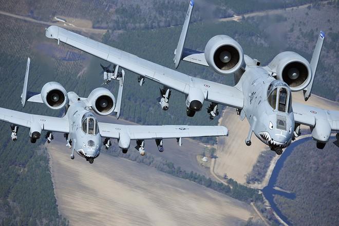 Hãy quên F-35 đi: Lợn lòi A-10 sẽ tiếp tục thống trị chiến trường với đôi cánh mới? - Ảnh 2.